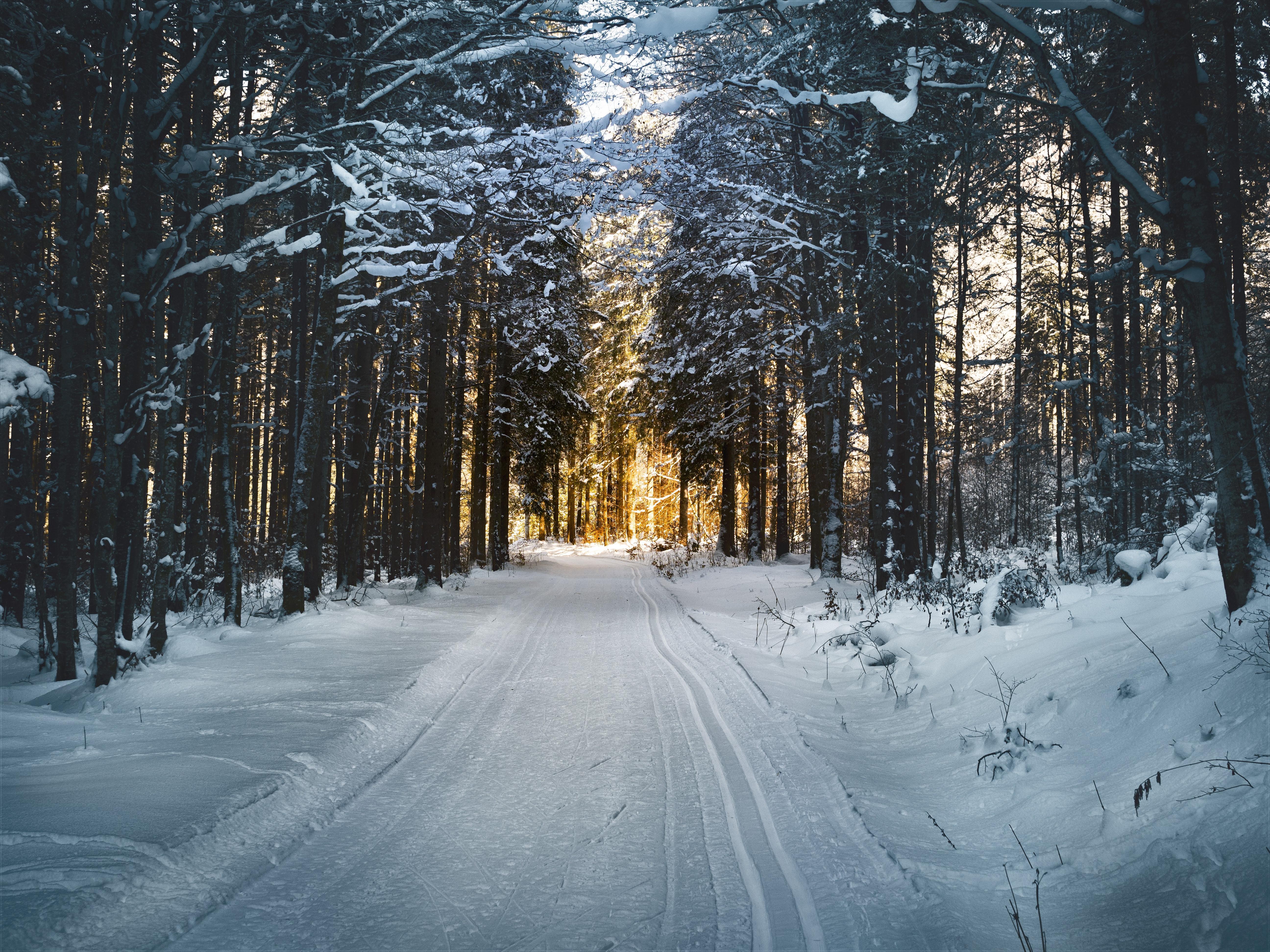 Jak przygotować się douprawiania sportów zimowych? | Męskie zdrowie
