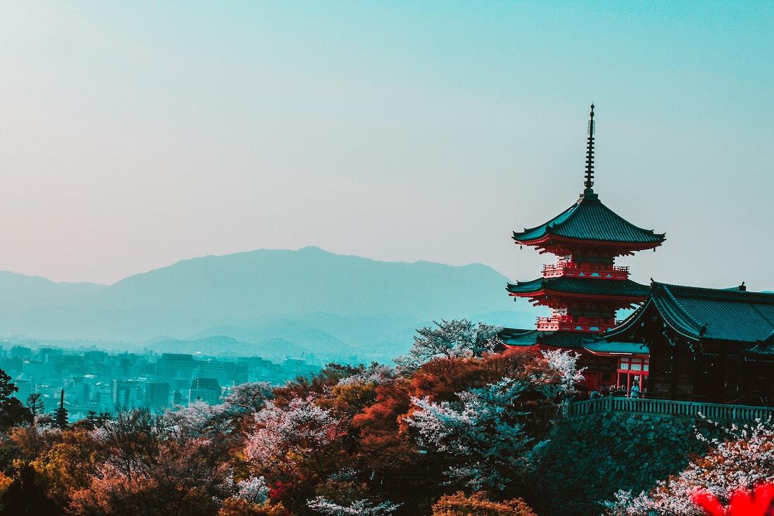 Japonia – wizyta w kraju kwitnącej wiśni!